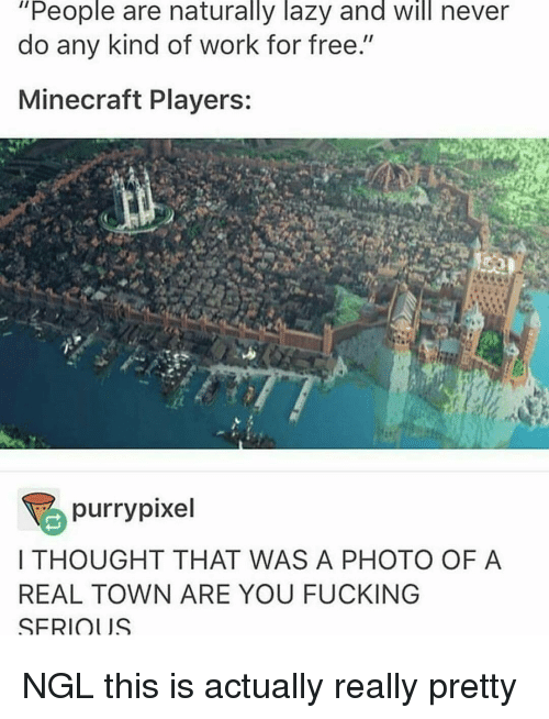 """mine craft: """"People are naturally lazy and will never  do any kind of work for free.""""  Mine craft Players:  purrypixel  THOUGHT THAT WAS A PHOTO OF A  REAL TOWN ARE YOU FUCKING  SFRIOl JS NGL this is actually really pretty"""