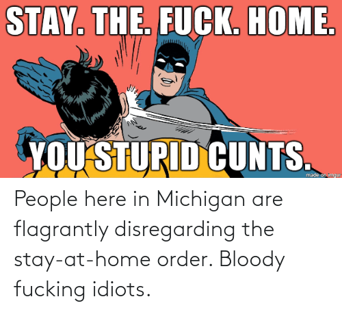 Are: People here in Michigan are flagrantly disregarding the stay-at-home order. Bloody fucking idiots.