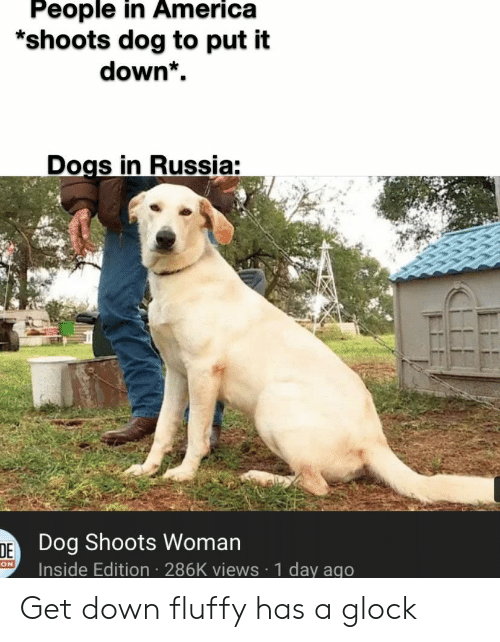 America, Dogs, and Reddit: People in America  *shoots dog to put it  down*  Dogs in Russia:  DE Dog Shoots Woman  Inside Edition 286K views 1 day ago  ON Get down fluffy has a glock