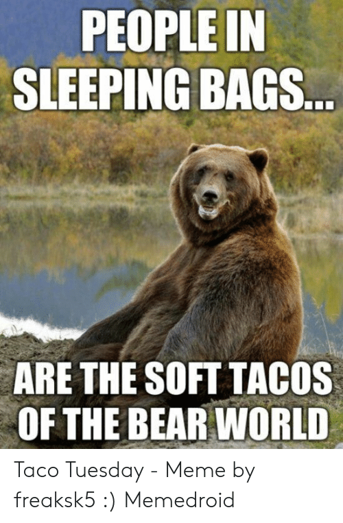 Taco Tuesday Meme: PEOPLE IN  SLEEPING BAGS  ARE THE SOFT TACOS  OF THE BEAR WORLD Taco Tuesday - Meme by freaksk5 :) Memedroid