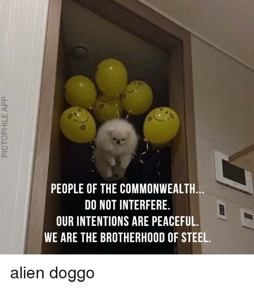 commonwealth: PEOPLE OF THE COMMONWEALTH.  DO NOT INTERFERE.  OUR INTENTIONS ARE PEACEFUL.  WE ARE THE BROTHERHOOD OF STEEL. <p>alien doggo</p>