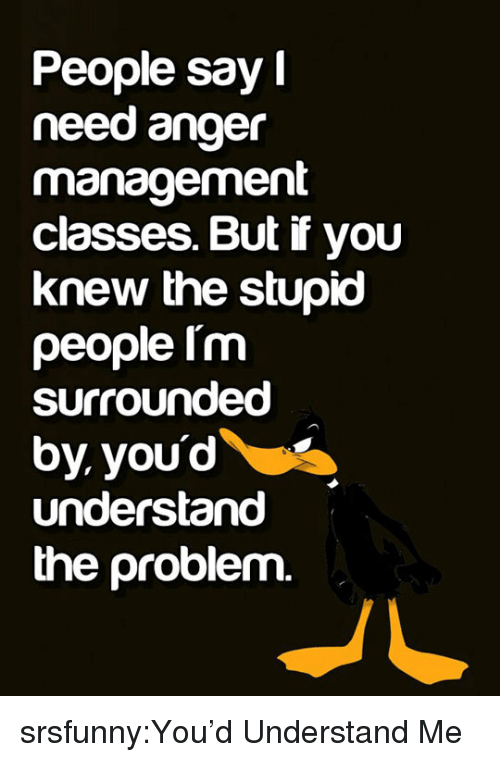 Anger Management: People say  need anger  management  classes. But if you  knew the stupio  people Im  surrounded  by youd  understand  the problem. srsfunny:You'd Understand Me