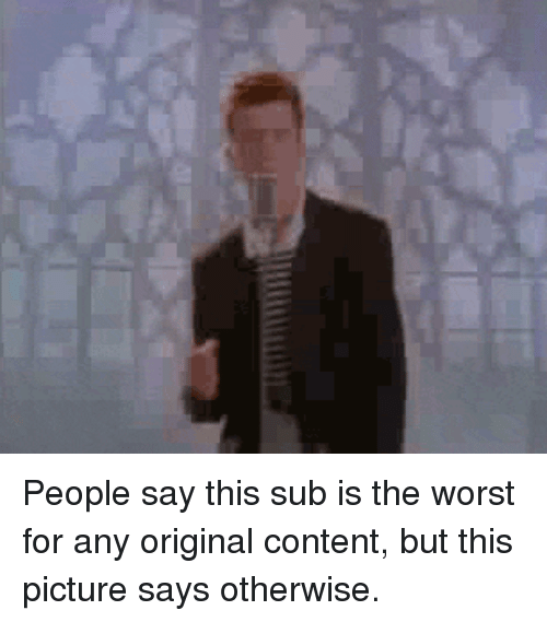circlejerk: People say this sub is the worst for any original content, but this picture says otherwise.