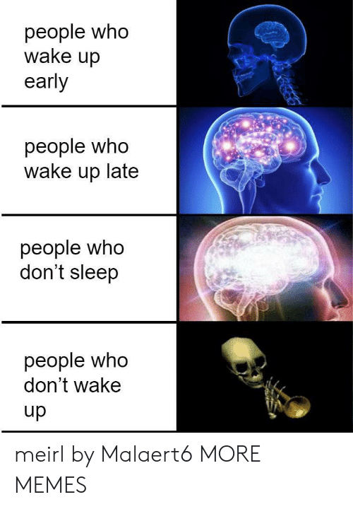 Dank, Memes, and Target: people who  wake up  early  people who  wake up late  people who  don't sleep  people who  don't wake  dn meirl by Malaert6 MORE MEMES