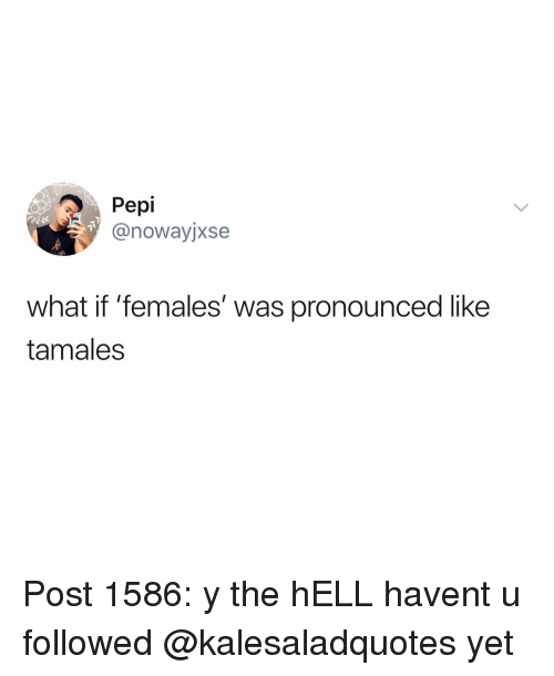 tamales: Pepi  @nowayjxse  what if 'females' was pronounced like  tamales Post 1586: y the hELL havent u followed @kalesaladquotes yet