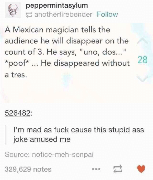"poof: peppermintasylum  anotherfirebender Follow  A Mexican magician tells the  audience he will disappear on the  count of 3. He says, ""uno, dos...""  *poof* He disappeared without 28  a tres.  526482:  I'm mad as fuck cause this stupid ass  joke amused me  Source: notice-meh-senpai  329,629 notes"