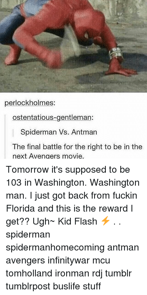 Gentlemane: perlockholmes:  ostentatious-gentleman:  Spiderman Vs. Antman  The final battle for the right to be in the  next Avengers movie. Tomorrow it's supposed to be 103 in Washington. Washington man. I just got back from fuckin Florida and this is the reward I get?? Ugh~ Kid Flash ⚡️ . . spiderman spidermanhomecoming antman avengers infinitywar mcu tomholland ironman rdj tumblr tumblrpost buslife stuff