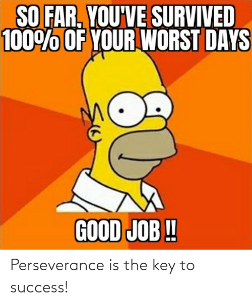 Success: Perseverance is the key to success!