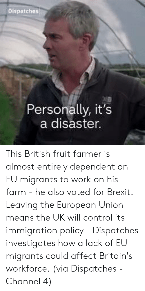 Memes, Control, and Work: Personally, it's  a disaster. This British fruit farmer is almost entirely dependent on EU migrants to work on his farm - he also voted for Brexit.  Leaving the European Union means the UK will control its immigration policy - Dispatches investigates how a lack of EU migrants could affect Britain's workforce.  (via Dispatches - Channel 4)