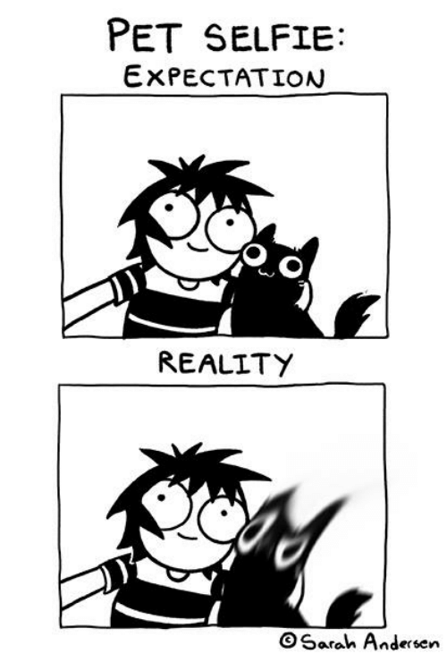 Expectation Reality: PET SELFIE:  EXPECTATION  REALITY  OSarah Andersen