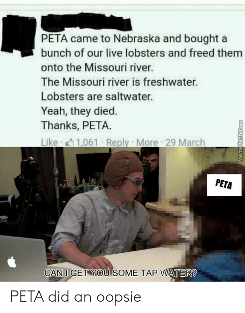 Yeah, Peta, and Live: PETA came to Nebraska and bought a  bunch of our live lobsters and freed them  onto the Missouri river.  The Missouri river is freshwater.  Lobsters are saltwater.  Yeah, they died.  Thanks, PETA.  Like 1,061 Reply More 29 March  PETA  CAN I GET YOU SOME TAP WATER PETA did an oopsie