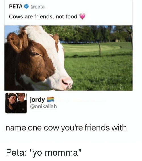 "Food, Friends, and Memes: PETA @peta  Cows are friends, not food  Jordy  @onikallah  name one cow you're friends with Peta: ""yo momma"""