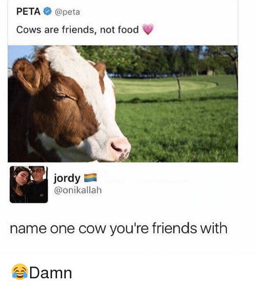 cowed: PETA@peta  Cows are friends, not food  Jordy  @onikallah  name one cow you're friends with 😂Damn