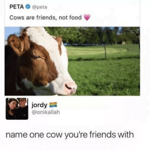 Food, Friends, and Peta: PETA@peta  Cows are friends, not food  jordy  @onikallah  name one cow you're friends with