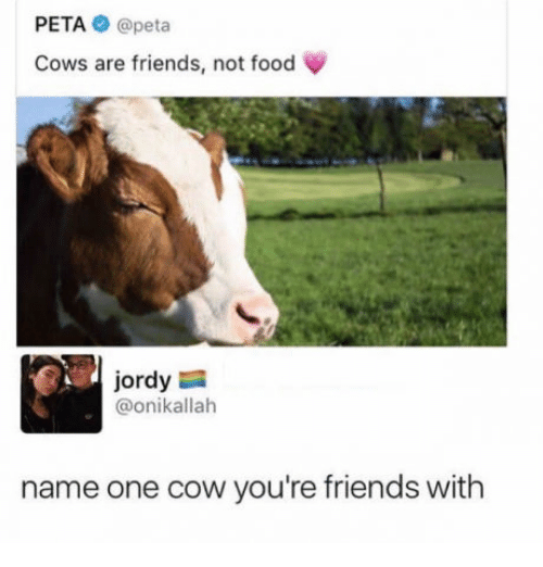 cowed: PETA @peta  Cows are friends, not food  ordy  @onikallah  name one cow you're friends with