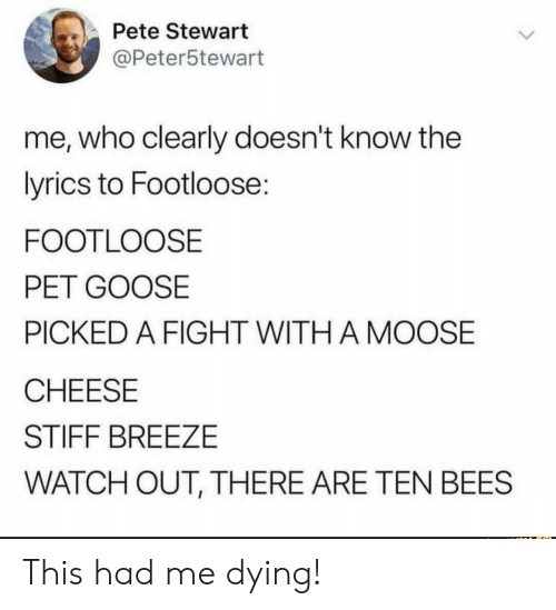 Stewart: Pete Stewart  @Peter5tewart  me, who clearly doesn't know the  lyrics to Footloose:  FOOTLOOSE  PET GOOSE  PICKED A FIGHT WITH A MOOSE  CHEESE  STIFF BREEZE  WATCH OUT, THERE ARE TEN BEES This had me dying!