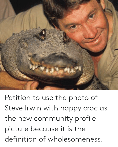 Profile Picture: Petition to use the photo of Steve Irwin with happy croc as the new community profile picture because it is the definition of wholesomeness.