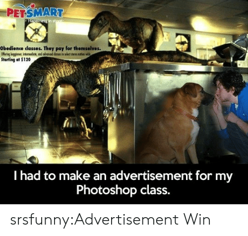 Petsmart: PETSMART  Obedience classes. They pay for themselves.  Starting at $120  l had to make an advertisement for my  Photoshop class. srsfunny:Advertisement Win