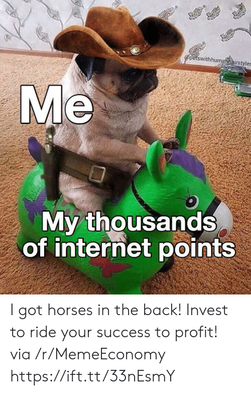 profit: @petswithhumahairstyles  Me  My thousands  of internet points I got horses in the back! Invest to ride your success to profit! via /r/MemeEconomy https://ift.tt/33nEsmY