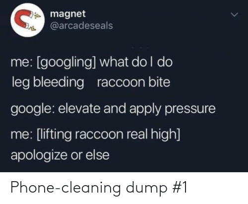 cleaning: Phone-cleaning dump #1