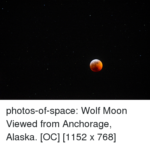 Tumblr, Alaska, and Blog: photos-of-space:  Wolf Moon Viewed from Anchorage, Alaska. [OC] [1152 x 768]