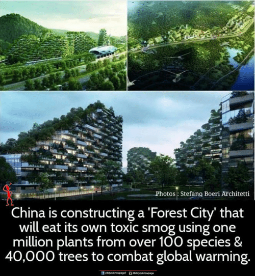 Global Warming, Memes, and China: Photos Stefano Boeri Architetti  China is constructing a Forest City' that  will eat its own toxic smog using one  million plants from over 100 species &  40,000 trees to combat global warming