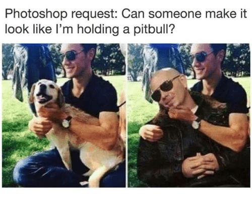 Photoshop, Pitbull, and Can: Photoshop request: Can someone make it  look like l'm holding a pitbull?