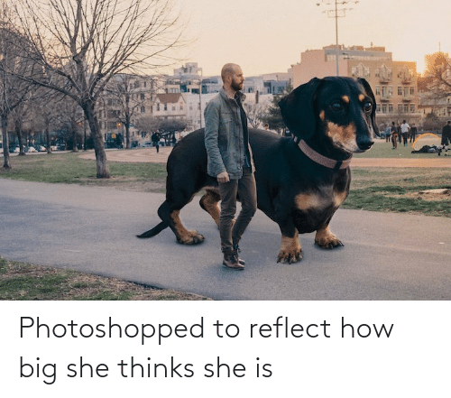 Reflect: Photoshopped to reflect how big she thinks she is