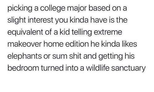 extreme: picking a college major based on a  slight interest you kinda have is the  equivalent of a kid telling extreme  makeover home edition he kinda likes  elephants or sum shit and getting his  bedroom turned into a wildlife sanctuary
