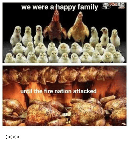 We Were: PicsGaG  we were a happy family  until the fire nation attacked :<<<