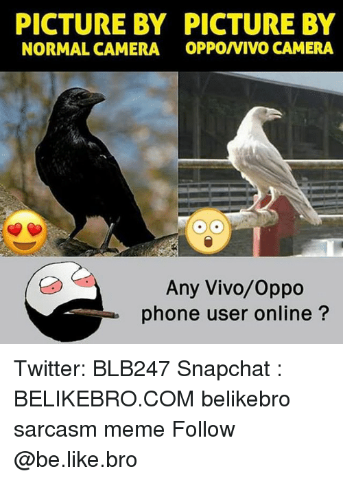 Be Like, Meme, and Memes: PICTURE BY PICTURE BY  NORMAL CAMERA OPPO/VIVO CAMERA  Any Vivo/Oppo  phone user online? Twitter: BLB247 Snapchat : BELIKEBRO.COM belikebro sarcasm meme Follow @be.like.bro