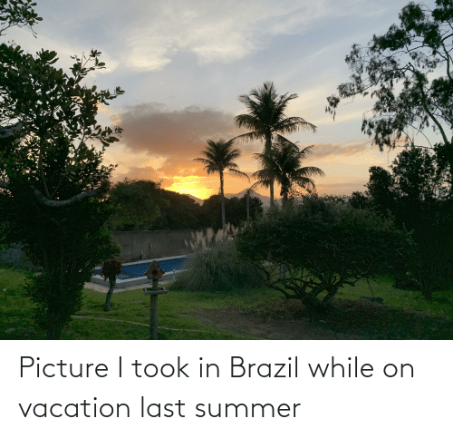 On Vacation: Picture I took in Brazil while on vacation last summer