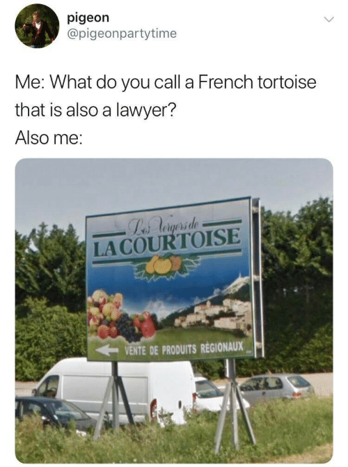 tortoise: pigeon  @pigeonpartytime  Me: What do you call a French tortoise  that is also a lawyer?  Also me:  Labs Aogsrsde  LACOURTOISE  VENTE DE PRODUITS REGIONAUX