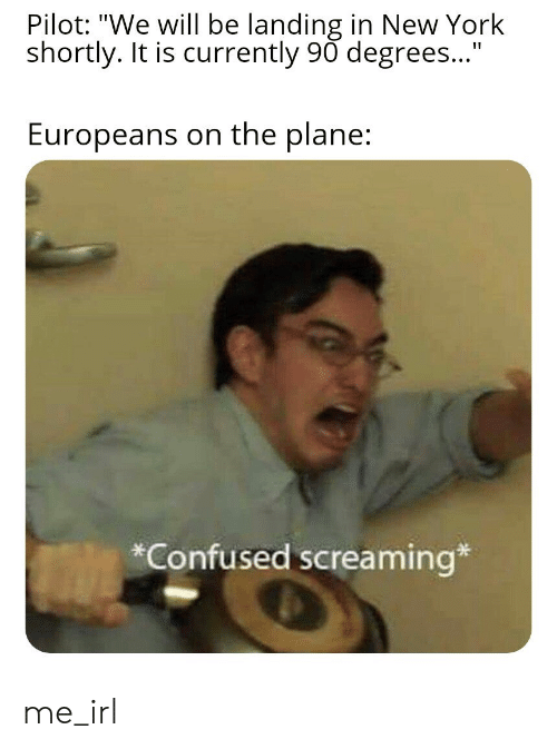 "landing: Pilot: ""We will be landing in New York  shortly. It is currently 90 degrees...""  Europeans on the plane:  Confused screaming* me_irl"