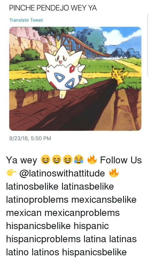 Latinos, Memes, and Translate: PINCHE PENDEJO WEY YA  Translate Tweet  8/23/18, 5:50 PM Ya wey 😆😆😆😂 🔥 Follow Us 👉 @latinoswithattitude 🔥 latinosbelike latinasbelike latinoproblems mexicansbelike mexican mexicanproblems hispanicsbelike hispanic hispanicproblems latina latinas latino latinos hispanicsbelike