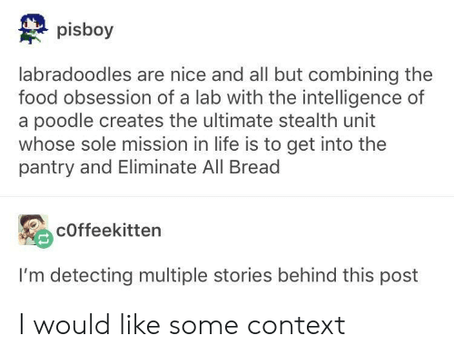 poodle: pisboy  labradoodles are nice and all but combining the  food obsession of a lab with the intelligence of  a poodle creates the ultimate stealth unit  whose sole mission in life is to get into the  pantry and Eliminate All Bread  cOffeekitten  I'm detecting multiple stories behind this post I would like some context
