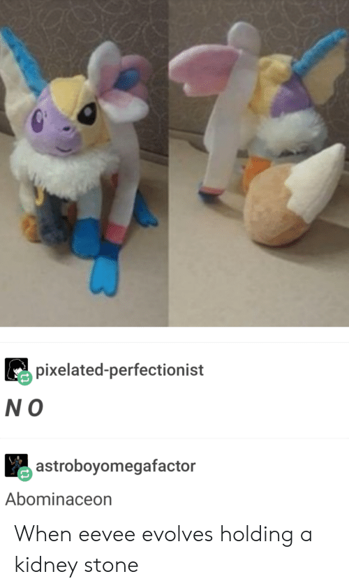 eevee: pixelated-perfectionist  N O  astroboyomegafactor  Abominaceon When eevee evolves holding a kidney stone