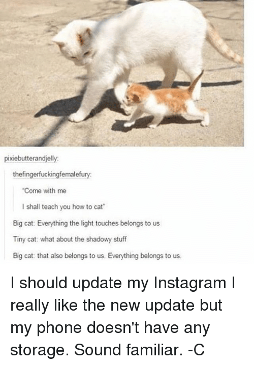 big cat: pixiebutterandjelly:  thefingerfuckingfemalefury:  Come with me  l shall teach you how to cat  Big cat: Everything the light touches belongs to us  Tiny cat: what about the shadowy stuff  Big cat: that also belongs to us. Everything belongs to us. I should update my Instagram I really like the new update but my phone doesn't have any storage. Sound familiar. -C