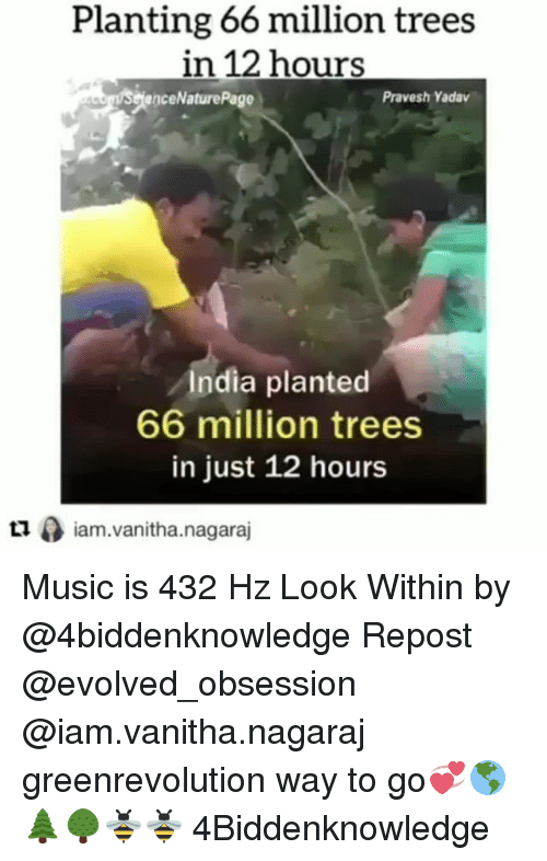 iams: Planting 66 million trees  in 12 hours  enceNaturePage  Pravesh Yadav  India planted  66 million trees  in just 12 hours  ロ0 iam.vanitha.nagaraj  Lliam.vanitha.nagaraj Music is 432 Hz Look Within by @4biddenknowledge Repost @evolved_obsession @iam.vanitha.nagaraj ・・・ greenrevolution way to go💞🌎🌲🌳🐝🐝 4Biddenknowledge
