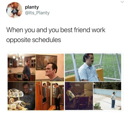 best friend: planty  @lts_Planty  When you and you best friend work  opposite schedules