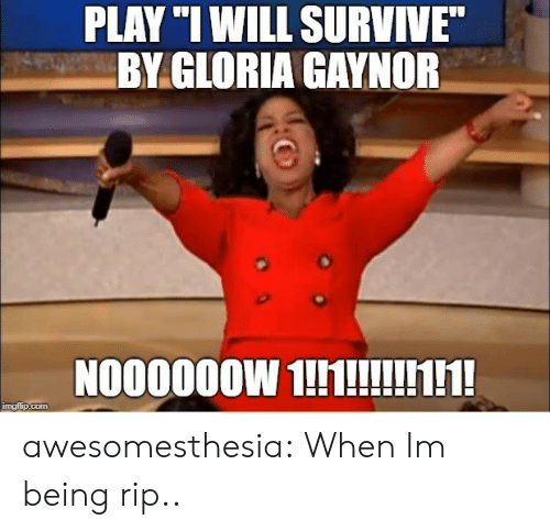 """Tumblr, Blog, and Http: PLAY """"I WILL SURVIVE  BY GLORIA GAYNOR  N000000W 1hlNH  mgiup.com awesomesthesia:  When Im being rip.."""