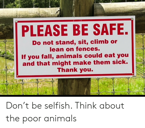 Animals, Fall, and Lean: PLEASE BE SAFE.  Do not stand, sit, climb or  lean on fences.  If you fall, animals could eat you  and that might make them sick.  Thank you. Don't be selfish. Think about the poor animals