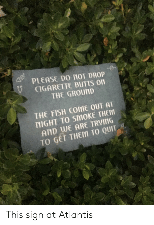 butts: PLEASE Do nol DROP  CIGARETTE BUTTS on  THE GROUND  THE FISH COME OUT AT  NIGHT TO SMOKE THEM  AND WE ARE TRVING  TO GET THEM TO QUIT This sign at Atlantis