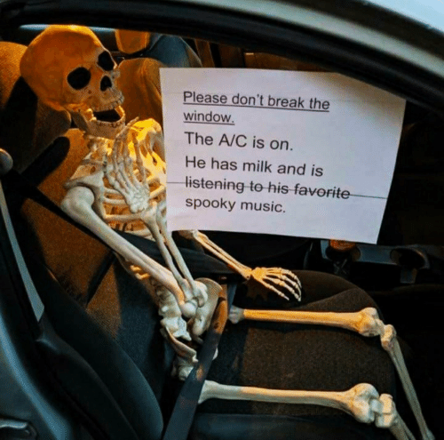 Music, Break, and Spooky: Please don't break the  window.  The A/C is on.  He has milk and is  listening to his favorite  spooky music.