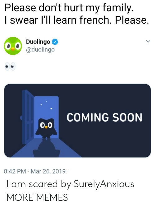 coming soon: Please don't hurt my family.  I swear l'll learn french. Please.  Duolingo Ф  @duolingo  COMING SOON  0.0  8:42 PM Mar 26, 2019 I am scared by SurelyAnxious MORE MEMES