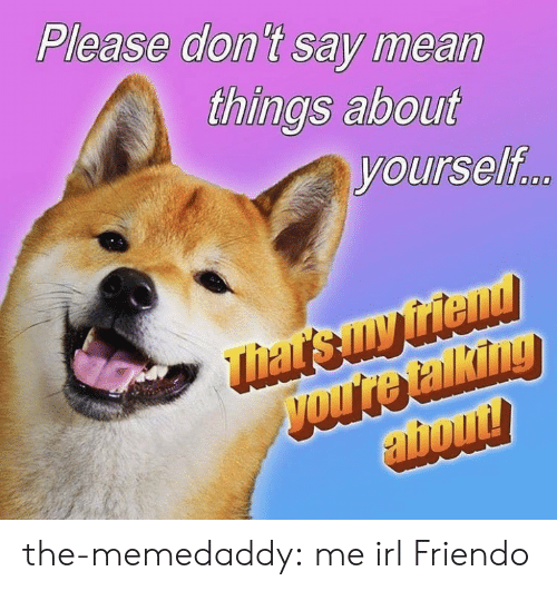 Friendo: Please don't say mean  things about  yourself the-memedaddy:  me irl  Friendo