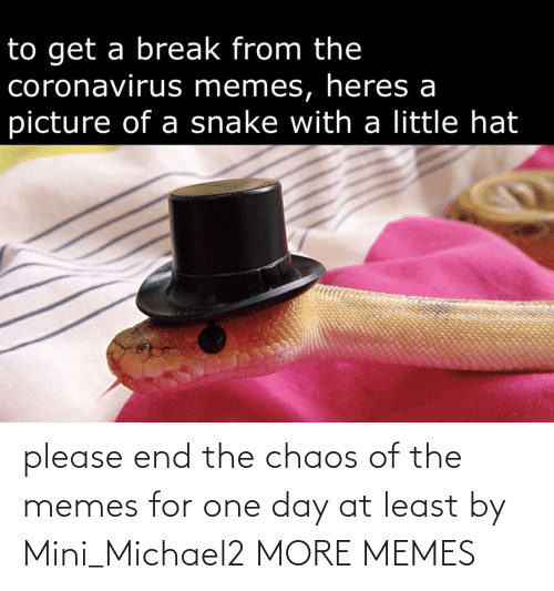 The Memes: please end the chaos of the memes for one day at least by Mini_Michael2 MORE MEMES