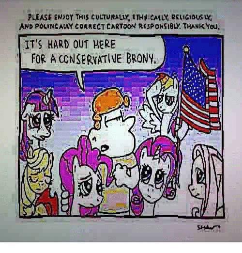brony: PLEASE ENJOY THIS CULTURALLY, ETHİCALLY RELIGIOUS y,  AND POLITICALLY CORRECT CARTOON RISPONSIBLY. THANK You  ITS HARD OUT HERE  FOR A CONSERVATIVE BRONY.