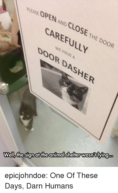 Tumblr, Animal, and Animal Shelter: PLEASE OPEN AND CLOSE THE DOOR  CAREFULLY  WE HAVE A  DOOR DASHER  animal shelter wasntlying..  at the  Wellz the sign epicjohndoe:  One Of These Days, Darn Humans