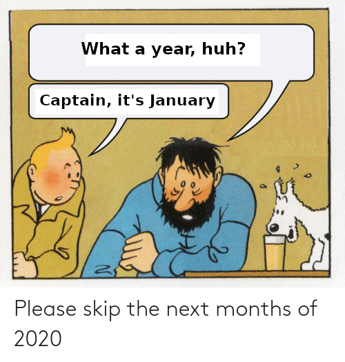 Skip: Please skip the next months of 2020